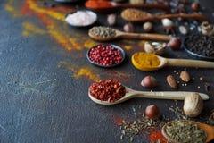 Diversas especias indias en cucharas y cuencos y nueces de madera del metal en la tabla de piedra oscura Especias coloridas, foco Imagen de archivo