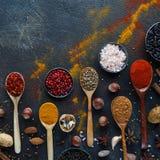 Diversas especias, nueces e hierbas indias en cucharas y cuencos de madera del metal Foto de archivo libre de regalías