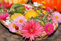 Diversas flores del jardín de las flores y calabazas ornamentales en una cesta Imagen de archivo