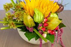 Diversas flores del verano en la maceta blanca 2 Imagen de archivo libre de regalías