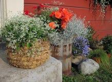 Diversas flores hermosas acercan a la pared de la casa, Lituania foto de archivo