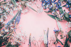 Diversas flores preciosas en el fondo pálido rosado, visión superior foto de archivo