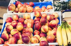 Diversas frutas frescas coloridas en la mercado de la fruta, Catania, Sicilia, Italia imágenes de archivo libres de regalías