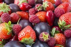 Diversas frutas frescas del verano Fresas maduras, frambuesas, bayas rojas y ciruelos fotografía de archivo