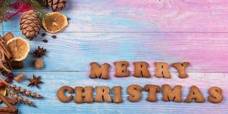 Diversas galletas del jengibre Fotografía de archivo libre de regalías