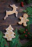 Diversas galletas para los niños con símbolos de la Navidad en su ENV Foto de archivo libre de regalías