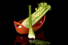 Diversas hastes dos celers em um prato alaranjado Fotografia de Stock