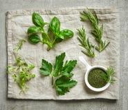 Diversas hierbas frescas Foto de archivo libre de regalías