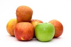 Diversas maçãs isoladas Foto de Stock Royalty Free