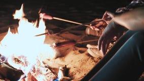 Diversas meninas sentam-se pelo fogo na noite e fritam-se salsichas Discuta e conduza a conversação Vieram em uma campanha vídeos de arquivo