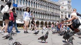 Diversas nacionalidades de los turistas se fotografían en smartphones con las palomas durante viaje en cuadrado de las marcas del metrajes