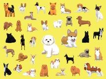 Diversas pequeñas actitudes de las razas del perro Foto de archivo libre de regalías