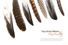 Diversas plumas aisladas en el fondo blanco, texto de la muestra Fotografía de archivo