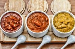 Diversas salsas de la barbacoa, surtido de la salsa del adjika Foto de archivo