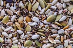 Diversas semillas y semillas fotos de archivo