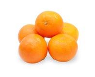 Diversas tangerinas, isoladas Imagem de Stock Royalty Free