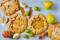 Diversas tartas de las frutas adornadas con los palillos de canela en el fondo concreto gris Galette sano vegetariano con las man imagenes de archivo
