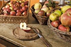 Diversas variedades de la manzana Fotografía de archivo libre de regalías