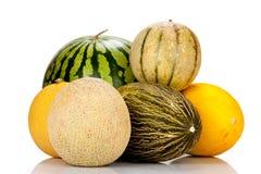 Diversas variedades de melones Imagen de archivo