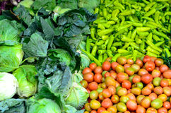 Diversas verduras Imágenes de archivo libres de regalías