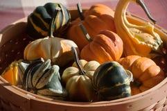 Diversas verduras de la caída en una cesta Imagenes de archivo