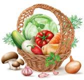 Diversas verduras de la cesta Fotos de archivo
