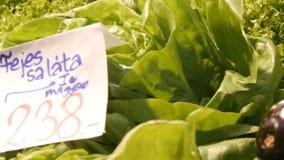 Diversas verduras en el contador del mercado del ultramarinos Comida sana, fibra, dieta, inscripción en húngaro almacen de metraje de vídeo