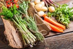 Diversas verduras frescas en corteza Fotos de archivo