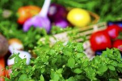 Diversas verduras maduras en el mimbre platean la hierba Alimentos sanos Fotos de archivo