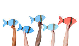 Diverse Arms Raised Holding Fishes Royalty Free Stock Photos