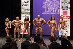 Diverse Athletic Physiques on Display at 2014 IFBB  NY Pro. Juliana Malacarne, Aaron Clark, Yeshaira Robles, Mamdouh Elsbbiay (Big Mamy), Camala Rodriguez, and Stock Images