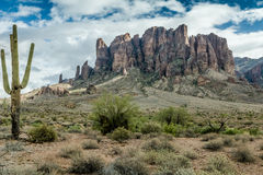 The Diverse Beauty of the Desert Landscape of Arizona Stock Image
