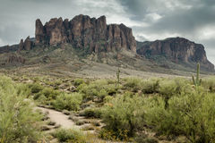 The Diverse Beauty of the Desert Landscape of Arizona Royalty Free Stock Photography