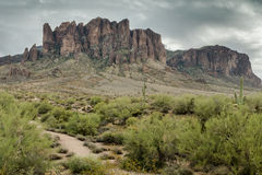 The Diverse Beauty of the Desert Landscape of Arizona Royalty Free Stock Photo