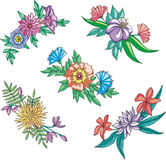 Diverse blommor för prydnadar Arkivfoto
