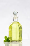 Diverse bouteille d'huiles essentielles et essences des usines fraîches image libre de droits