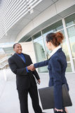 Diverse Business Man and Woman Handshake Royalty Free Stock Photos
