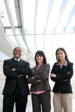 Diverse Business Team Royalty Free Stock Photography