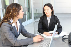 Diverse business team meeting as a group. An attractive, diverse business team meeting as a group at office Royalty Free Stock Images