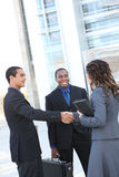 Diverse Business Team Shaking Hands Royalty Free Stock Photos