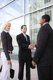 Diverse Business Team Shaking Hands Stock Photo