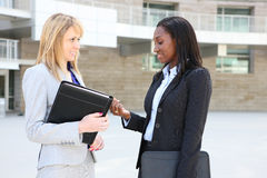 Diverse Business Woman Team Stock Photography