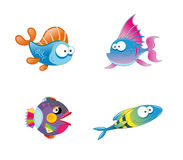 Diverse collection mignonne de poissons Photo stock