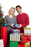 Diverse couple celebrating Christmas Stock Photography