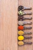 Diverse cuillère d'herbe asiatique Image libre de droits