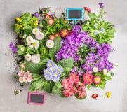 Diverse de zomerbloemen in potten met tuinteken Voorbereiding van tuinbed van bloemen in potten Stock Afbeeldingen