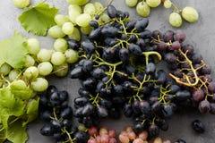 Diverse druivengewassen op grijze steenachtergrond Royalty-vrije Stock Foto