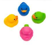 Diverse ducks Stock Images