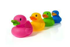 Diverse ducks. Several different colors of rubber ducks. Could be a symbol of diversity or cooperation