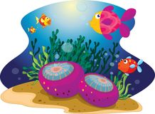 Diverse fish Royalty Free Stock Photo
